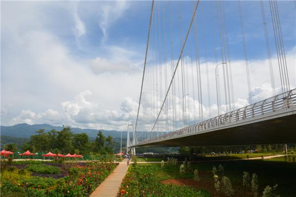 美丽高速行活动之龙江特大桥