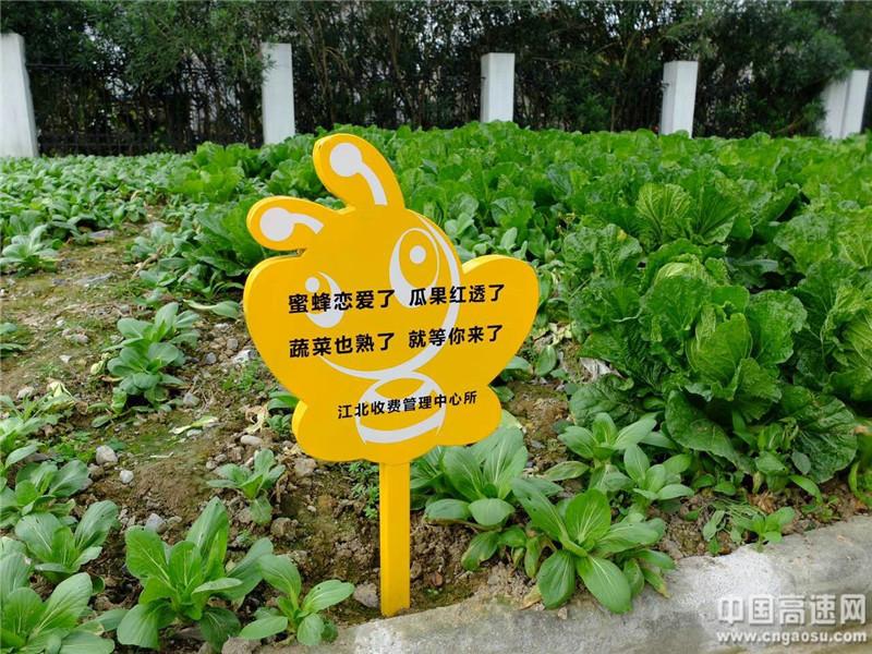 最美景观高速路・桥(宁波段)交流活动119